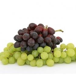 Vynuogių kauliukų aliejus, 100ml
