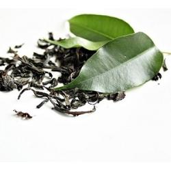 Žaliosios arbatos EKSTRAKTAS, 10ml
